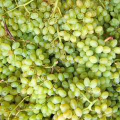 green grapes isolated, natural background