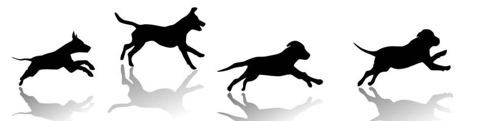 running dogs, vector image