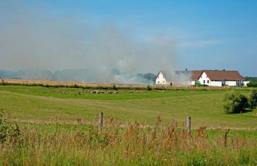 Duńska wyspa Bornholm i wypalanie traw