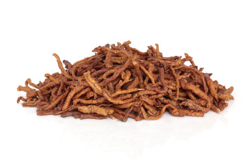 Senega Root Herb