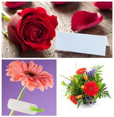 Blumen Set