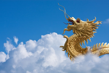 Gold dragon fly over blue sky and big white cloud
