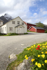 Lofoten's Rorbu and Flowers