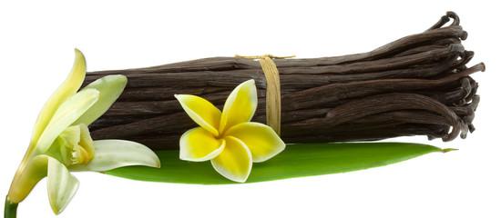 """photos, illustrations et vidéos de """"fleurs de vanille"""""""