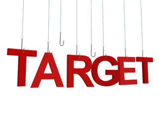 "Text ""Target"" hanging on a fishing hook. Isolated over white"