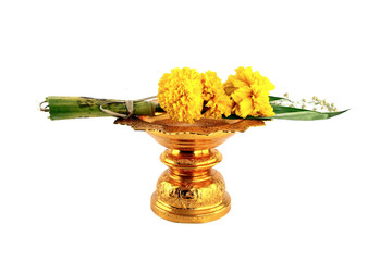 marigold with golden tray on white background