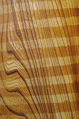 Detail the structure of wood, abstract background