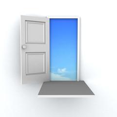 3D door to success