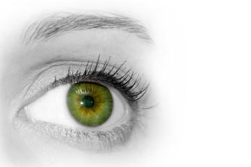 Abstract Green Eye