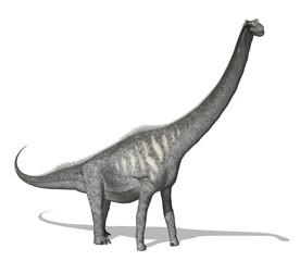 Sauroposeidon Dinosaur - 3d render