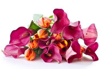 bouquet of calla lilies and tulips