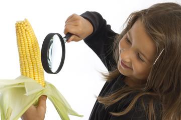 Sechsjährige betrachtet Maiskolben (mr)