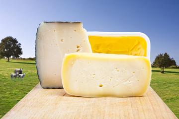 quesos con paisaje del campo