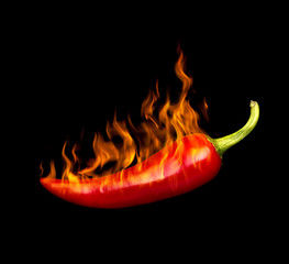 Canvas Prints Hot chili peppers red hot chili pepper by fire on a black background