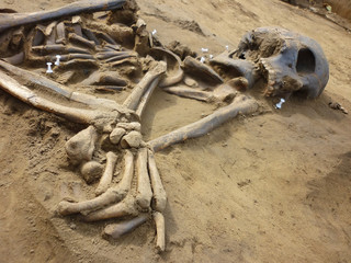 Skeleton of ancient man found during excavations in the flood zo