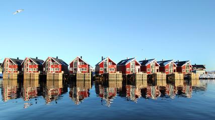 Arctic architecture