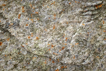 old stone lichen background