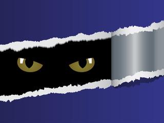 vector view on feline eyes