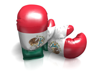 BOXING GLOVES MEXICO