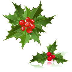 Christmas Flower holly berry