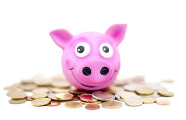 cochon rose d'épargne
