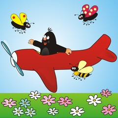 mole and the plane
