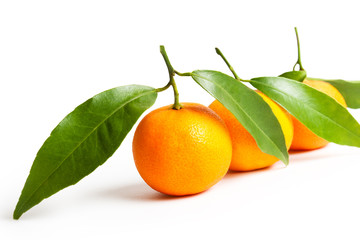 ripe tangerines with leaves