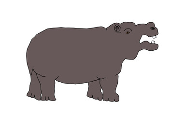 wild animal - hippo, vector