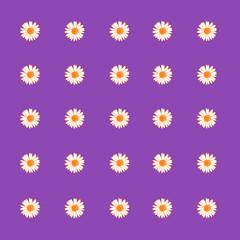 Gänseblümchen 4