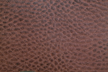 Piece of beef brown leather
