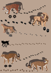 six big cats with tracks