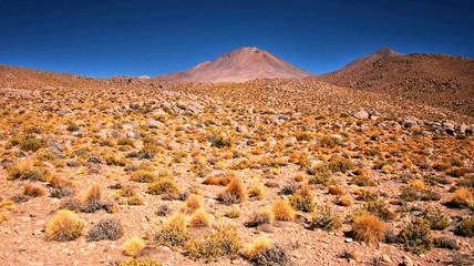 Nice Bolivian landscape with blue sky