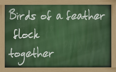 """"""" Birds of a feather flock together """" written on a blackboard"""