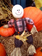 Fall decorations of pumpkins, scarecrow sitting on bale of hay