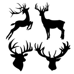 deer silhouette isolated on white background