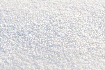 Background from white  snow. Small depth of focus center.
