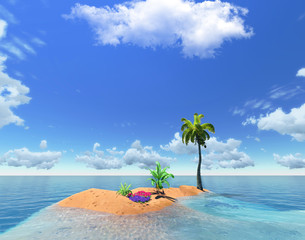 tropical island and palm