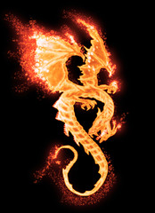 Wall Murals Dragons burning dragon isolated