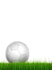 High resolution soccer ball in grass