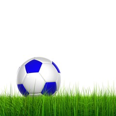 High resolution soccer ball in grass