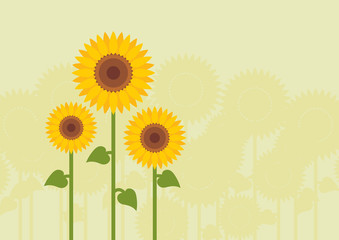 Yellow sunflowers landscape background illustration