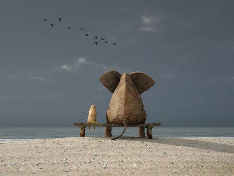 elephant and dog sit on a beach