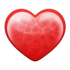 Love heart of roses