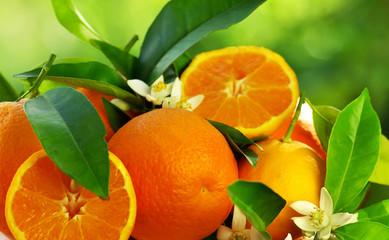 orange fruits and flowers