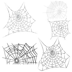vector cobwebs