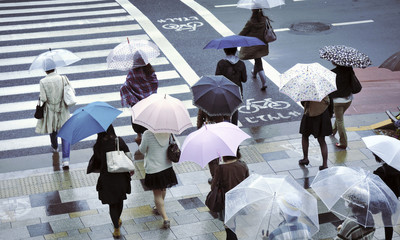 Foto auf AluDibond Tokio rainy street