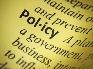 Definition: Policy