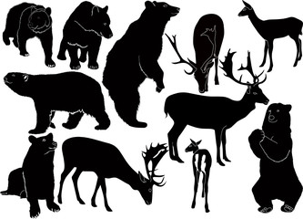 Deer bears animals it is isolated