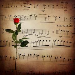 Spartito musicale, rosa, atmosfera retro