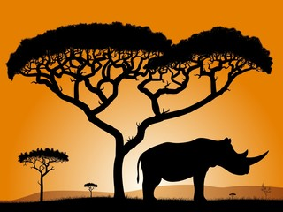 Savannah, the silhouette of the trees and the rhinoceros.